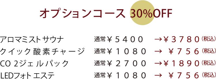 オプションコースも30%オフ!